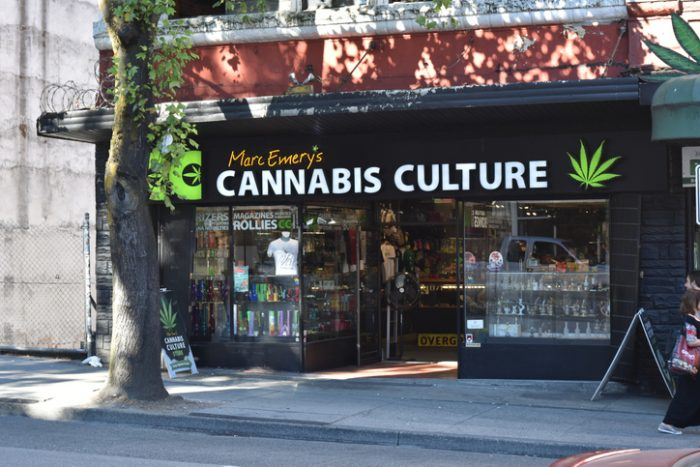 Cannabis Hemp Business